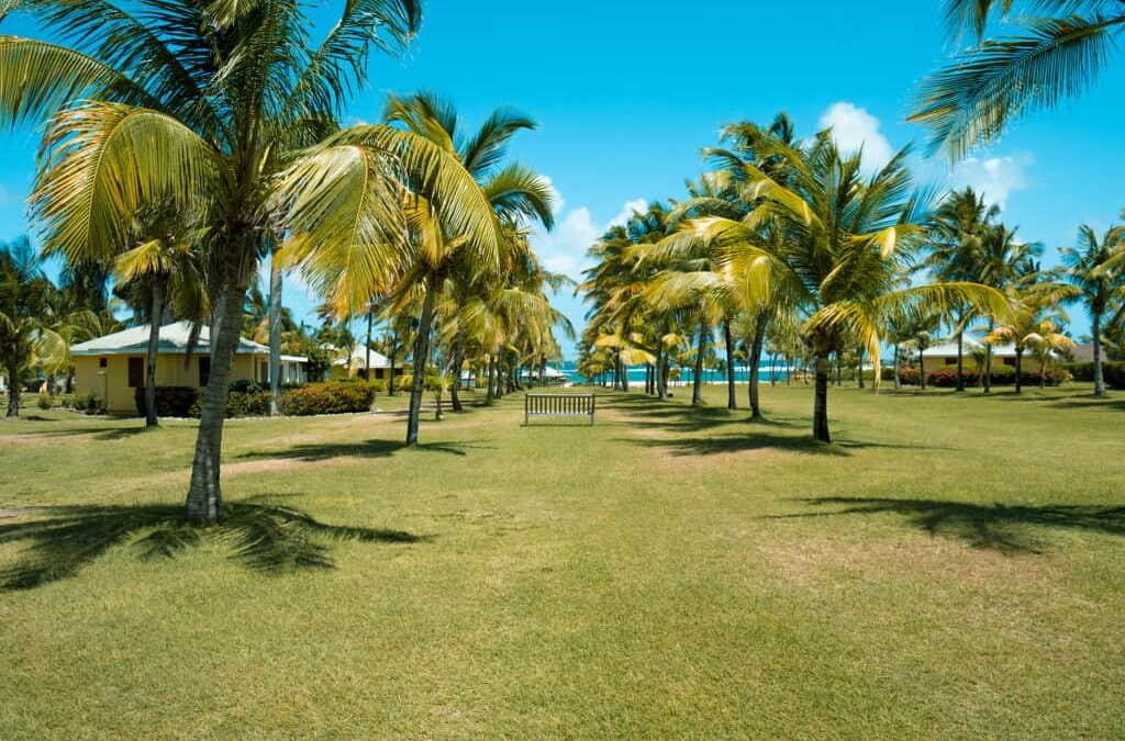 Nevis Sustainability